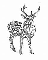 Deer Coloring Patterned sketch template