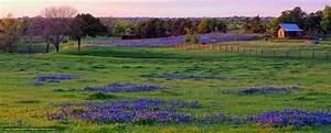 Texas Landscape Desktop Wallpaper - WallpaperSafari