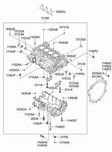 211422b000 - Hyundai Engine Timing Cover Gasket  O