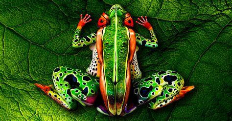 19 corps peints dont les courbes donnent vie 224 des animaux