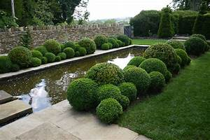 Niwaki - Another Day, Another Dollop of Organic Topiary