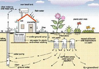 petition implement  law  adopting rain water