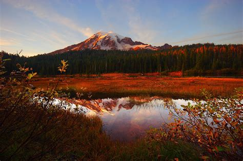 Mt. Rainier National Park Reopens Amidst