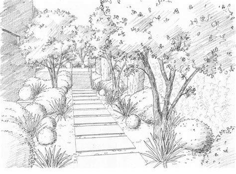 landscaping drawings landscape drawings drawings pinterest