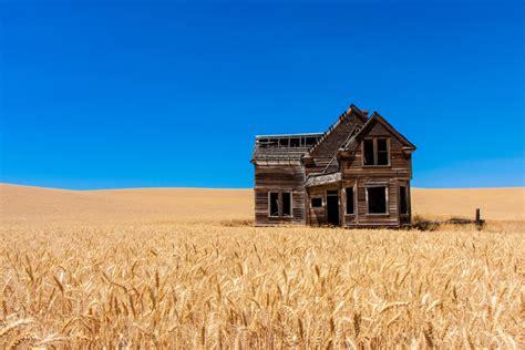 photographies de magnifiques champs de ble chambre