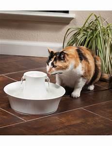 Balkonschutz Für Katzen : keramik trinkbrunnen avalon josty f r hunde und katzen ~ Eleganceandgraceweddings.com Haus und Dekorationen