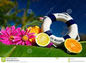 Tropical welcome on board stock photo. Image of tropical ...