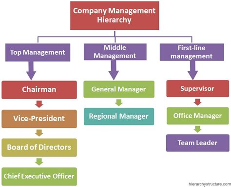 Company Management Hierarchy Structure