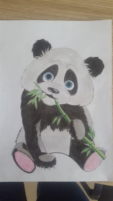 panda drawing ideas  pinterest panda drawing