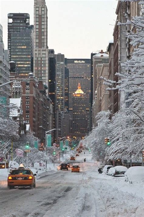 Central Park Winter Iphone Wallpaper by Iphone Wallpapers Wallpapers And Iphone On