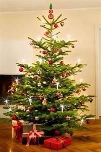Weihnachtsbaum Richtig Schmücken : christoball baumschm cken 1x1 ~ Buech-reservation.com Haus und Dekorationen