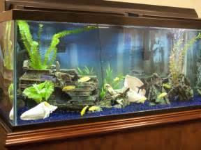 Saltwater Fish Tank Designs