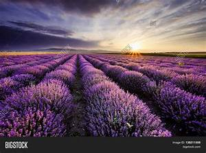 Beautiful Landscape Sunrise Image & Photo | Bigstock