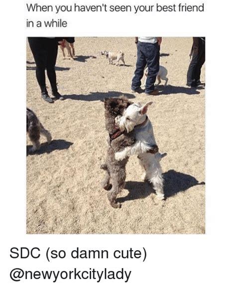 Cute Friend Memes - cute best friend memes 28 images 30 hilarious best friend meme collection golfian com cute