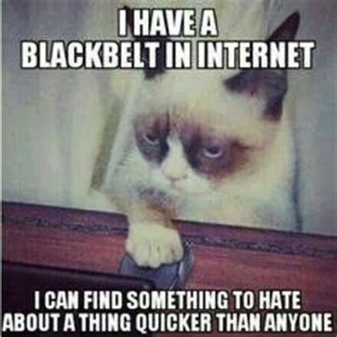 Pain In The Ass Meme - 1000 images about grumpy cat on pinterest grumpy cat grumpy cat meme and memes