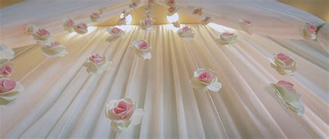 wedding backdrops  wedding trends videography