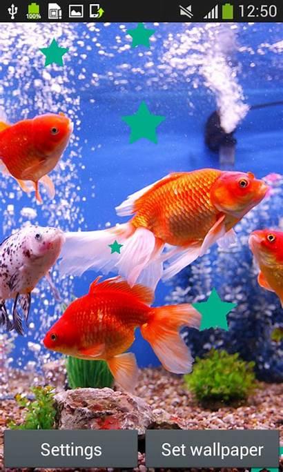 Wallpapers Aquarium Android Apps Fish App Sea