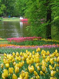 Beautiful Spring Garden Scenes