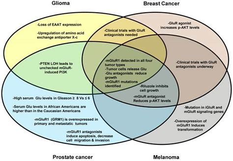 glutamate signaling  benign  malignant disorders
