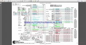 Cummins Celect Wiring Diagram Manual