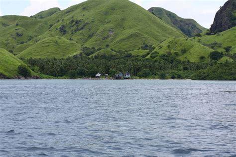 komodo island island  indonesia thousand wonders
