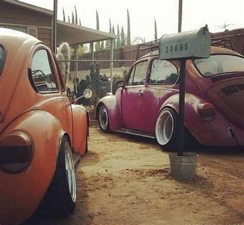 pin  randy lash  vw bugs vw beetles volkswagen