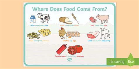 food   display poster   food