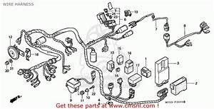 Honda Gl1500c Valkyrie 1997  V  France Wire Harness