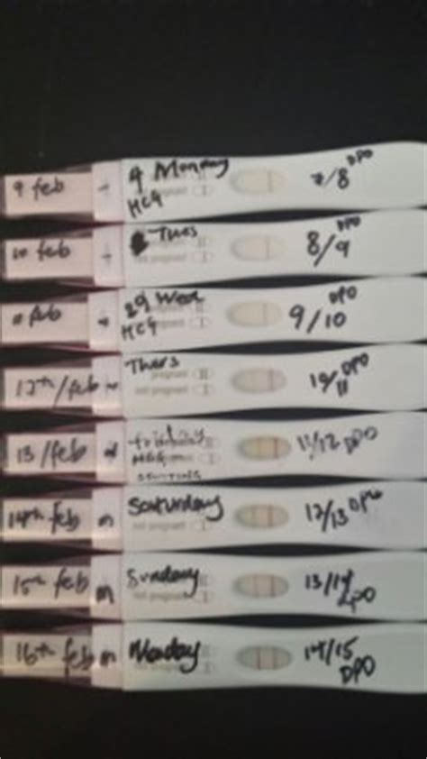 Bfp Progression From 12dpo To 16dpo Expecting A Baby - Www