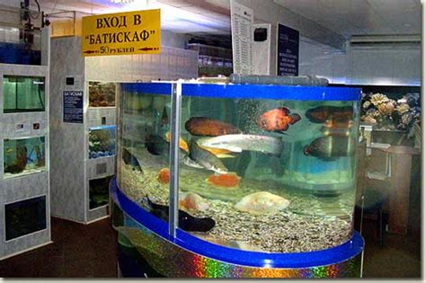 Aquarium Shop In Moscow  Aquapress Bleher