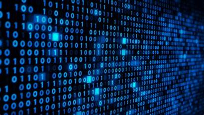 Code Binary Office Videohive Butlerm Coding Digital