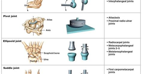 Here Are Some Types Of Joints And How They Differ In The