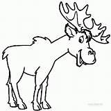 Moose Coloring Printable Elk Head Funny Outline Drawing Cool2bkids Skull Animals Animal Template Hunting Getdrawings Templates Popular Clipartmag sketch template