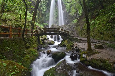 Free Waterfall Photo by Waterfall Exposure With Bridge And Image