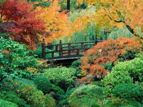 garden in portland or 1000 images about fall or autumn if you prefer on pinterest japanese gardens fall leaves