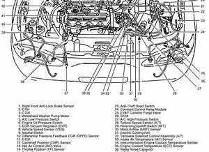 1999 Ford Escort Engine Diagram