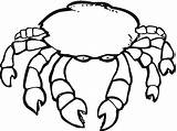 Crab Coloring Pages Printable Crabs Drawing Template Crustacean Hermit Getdrawings Coloringpages101 Bestcoloringpagesforkids Silhouettes sketch template