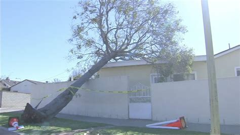 high winds  power outages damage  southland abccom