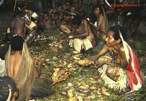 Culture De La Patate Douce : civilisation ~ Carolinahurricanesstore.com Idées de Décoration