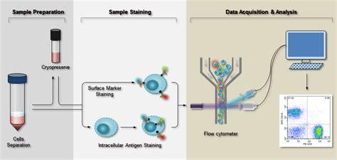 Flow Cytometry (FCM) /FACS Protocol