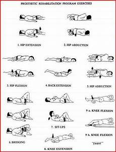 Diagrams Of Physical Therapy Exercises