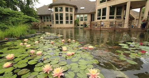 size of pond aquaterra one acre pond and waterfall hometalk