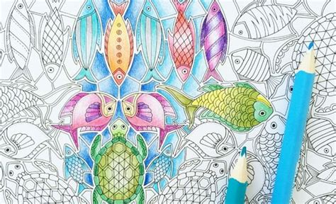 Tips From Johanna Basford On Coloring Intricate Line Art