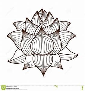 Dessin Fleurs De Lotus : conception d 39 ic ne d 39 isolement par dessin de fleur de lotus illustration de vecteur ~ Dode.kayakingforconservation.com Idées de Décoration