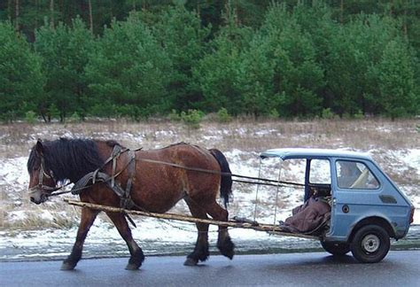 horse cars funny voiture power vehicle auto horsepower cheval truck vehicles