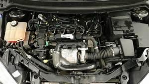 Courroie De Distribution Diesel : courroie de distribution mazda 5 diesel best auto galerie ~ Gottalentnigeria.com Avis de Voitures