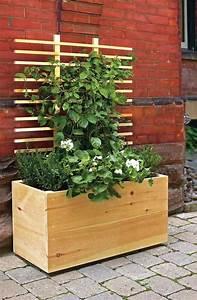Rankhilfe Holz Selber Bauen : holz pflanzk bel mit rankhilfe f r kletterpflanzen diy ~ Watch28wear.com Haus und Dekorationen