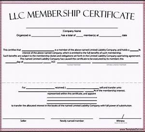 Llc membership certificate template templatezet for Llc membership certificate template