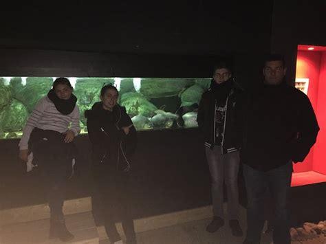 aquarium d ottrott les naades parc aquarium les naiades ottrott ce qu il faut savoir pour votre visite tripadvisor