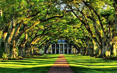 Wallpapers Footpath Mansion Nature 2560 1600 Tree